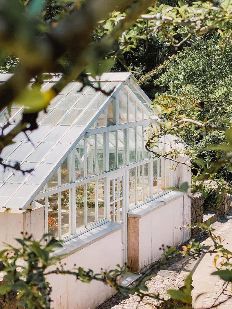 Outside view of a greenhouse